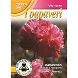 Poppy Rhoeas a fiore doppio