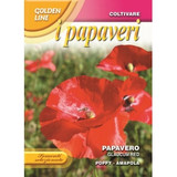 Poppy glaucum red