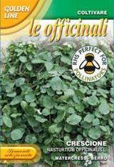 Watercress - Nasturtium officinalis