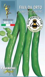 Broad Bean Lunga Delle Cascine 1Kg. UK Only. (A)Vicia Faba L.