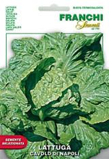 Lettuce Cavolo Di Naples