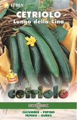 Cucumber - Salatgurke Longo Della Cina Leben