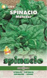 Spinach – Spinat Matador Leben