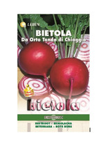 Beetroot - Tonda Chioggia Leben