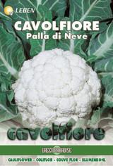 Cauliflower - Blumekkohl Palla di Neve