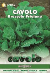 Winter Greens - Brokoli Friuliana