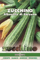 Courgette - Gartenkurbis Alberello Leben