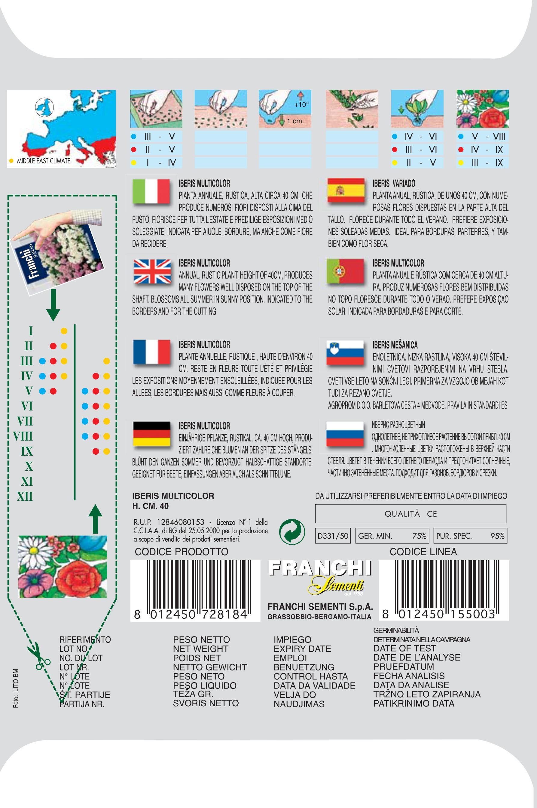 Iberis multicolor