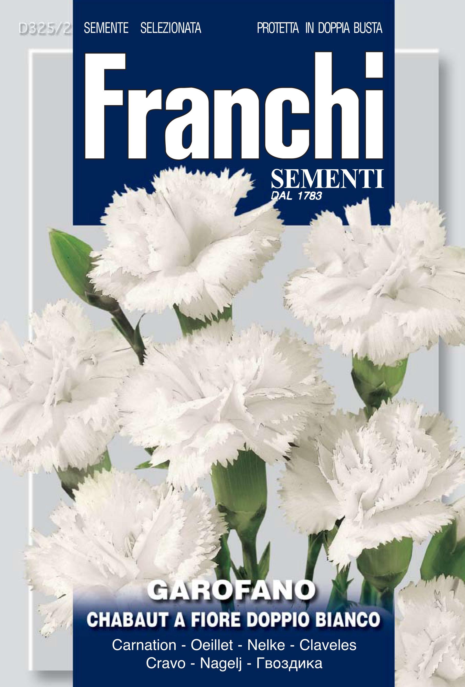 "Carnation Chabaut white ""Garofano Bianco"""