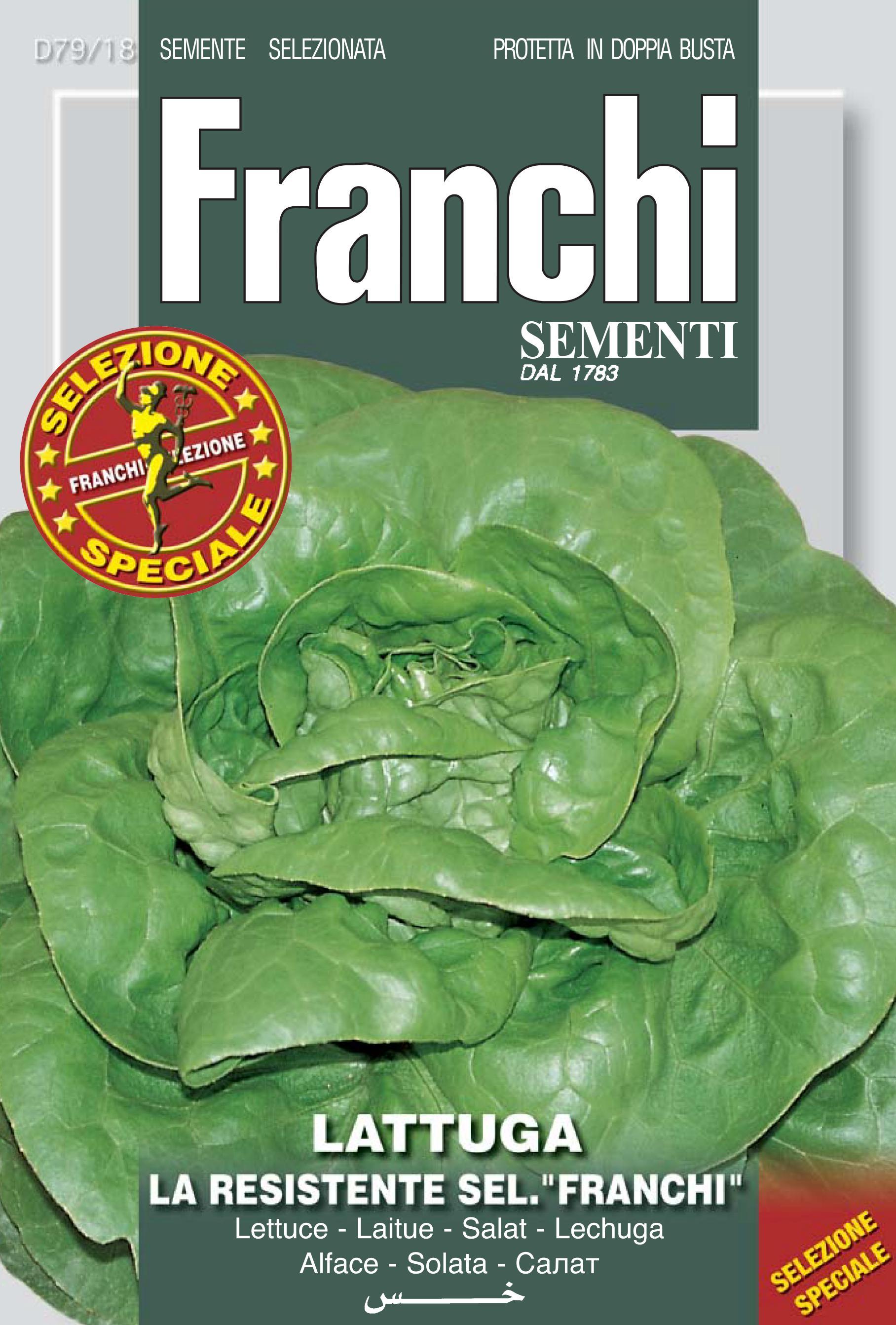 """Lettuce La Resistente Sel.""""Franchi"""""""