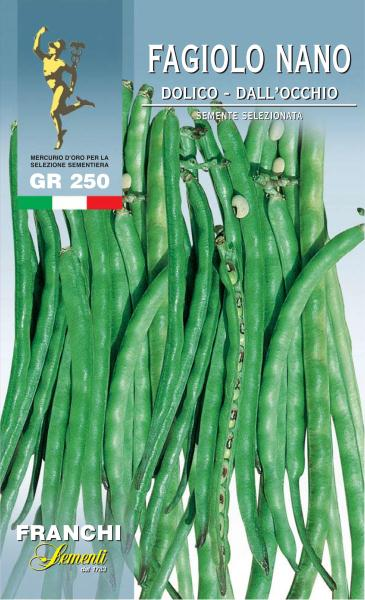 Black Eye Bean Dolico Dell'Occhio Veneziano UK only (A) Phaseolus vulgaris L.