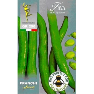 Broad Bean Superaguadulce Box UK only 250g (A)Vicia faba L.