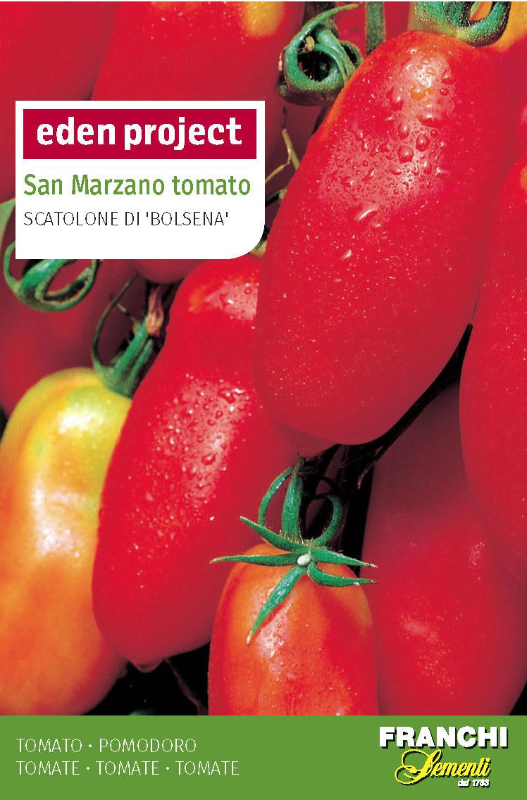 Plum Tomato San Marzano 'Scatolone Di Bolsena' - Solanum lycopersicum
