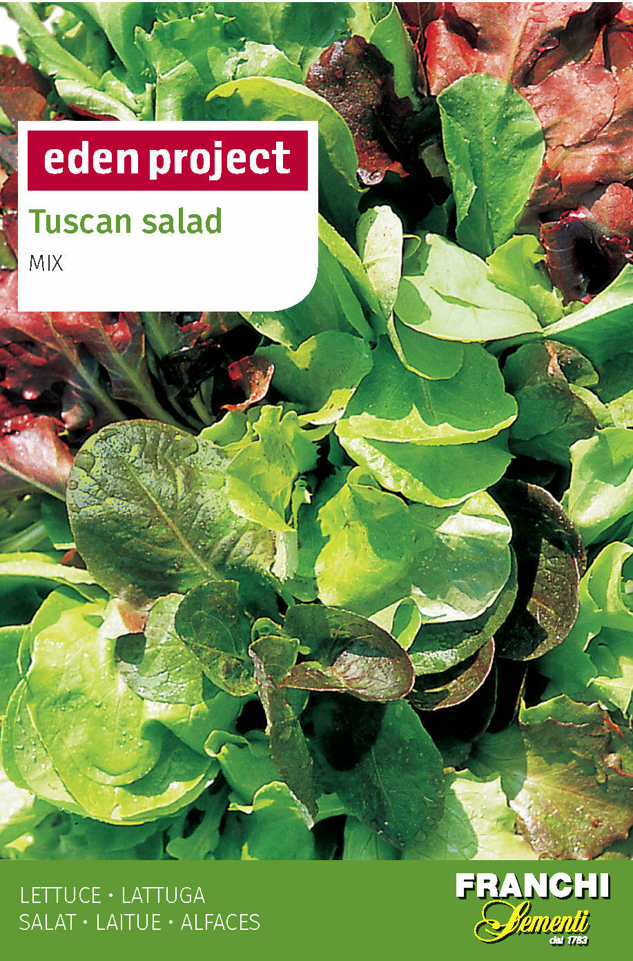 Tuscan Salad Mix - Lactuca sativa