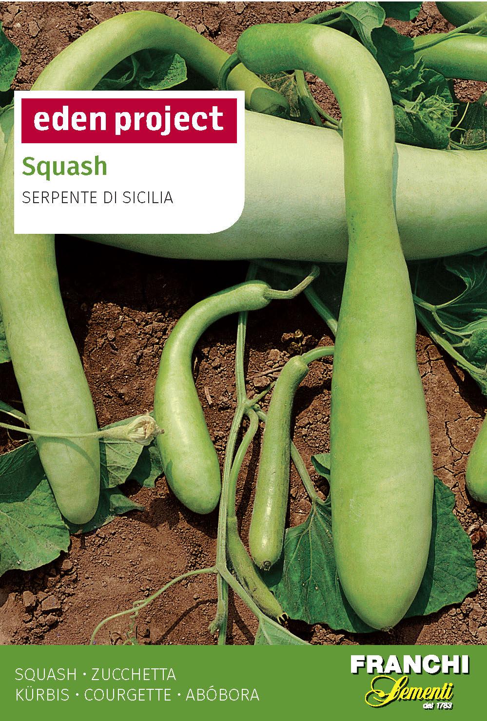 Squash 'Serpente Di Sicilia'- Lagenaria vulgaris S.