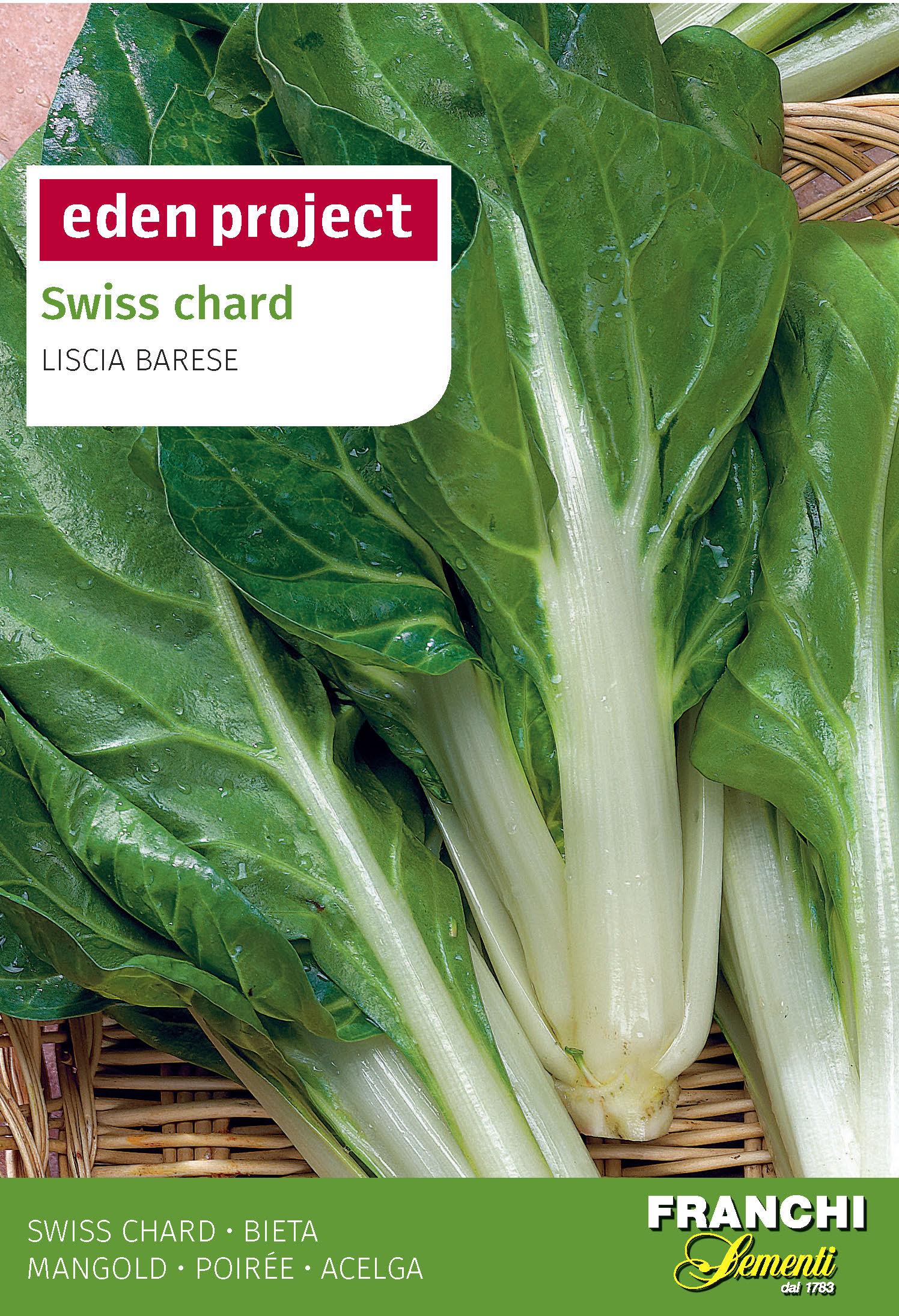 Swiss Chard 'Liscia Barese' - Beta vulgaris L
