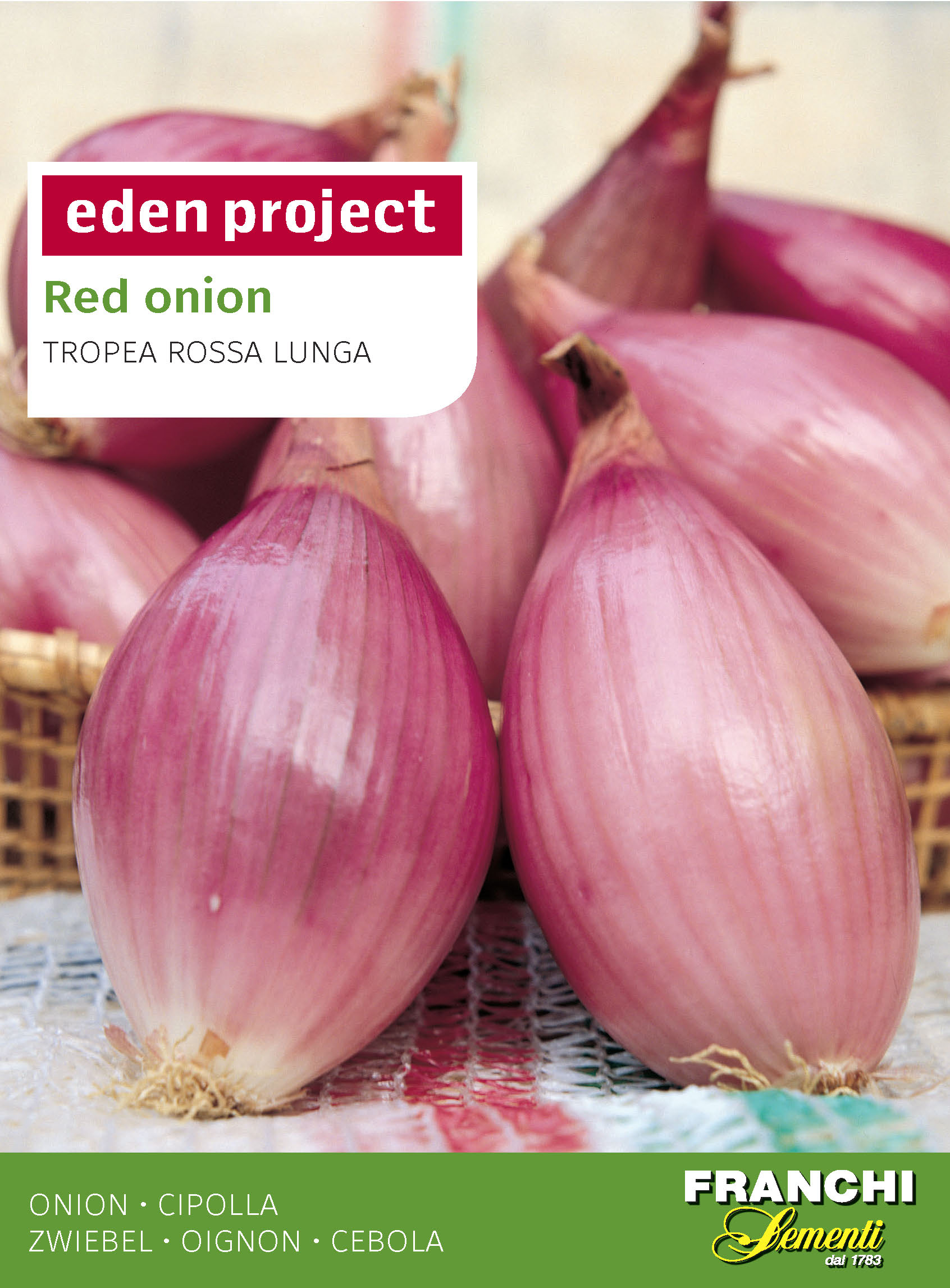 Red Onion 'Tropea Rossa Lunga' - Allium cepa