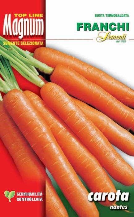 Carrot Nantese Bulk 50g Growers Pack