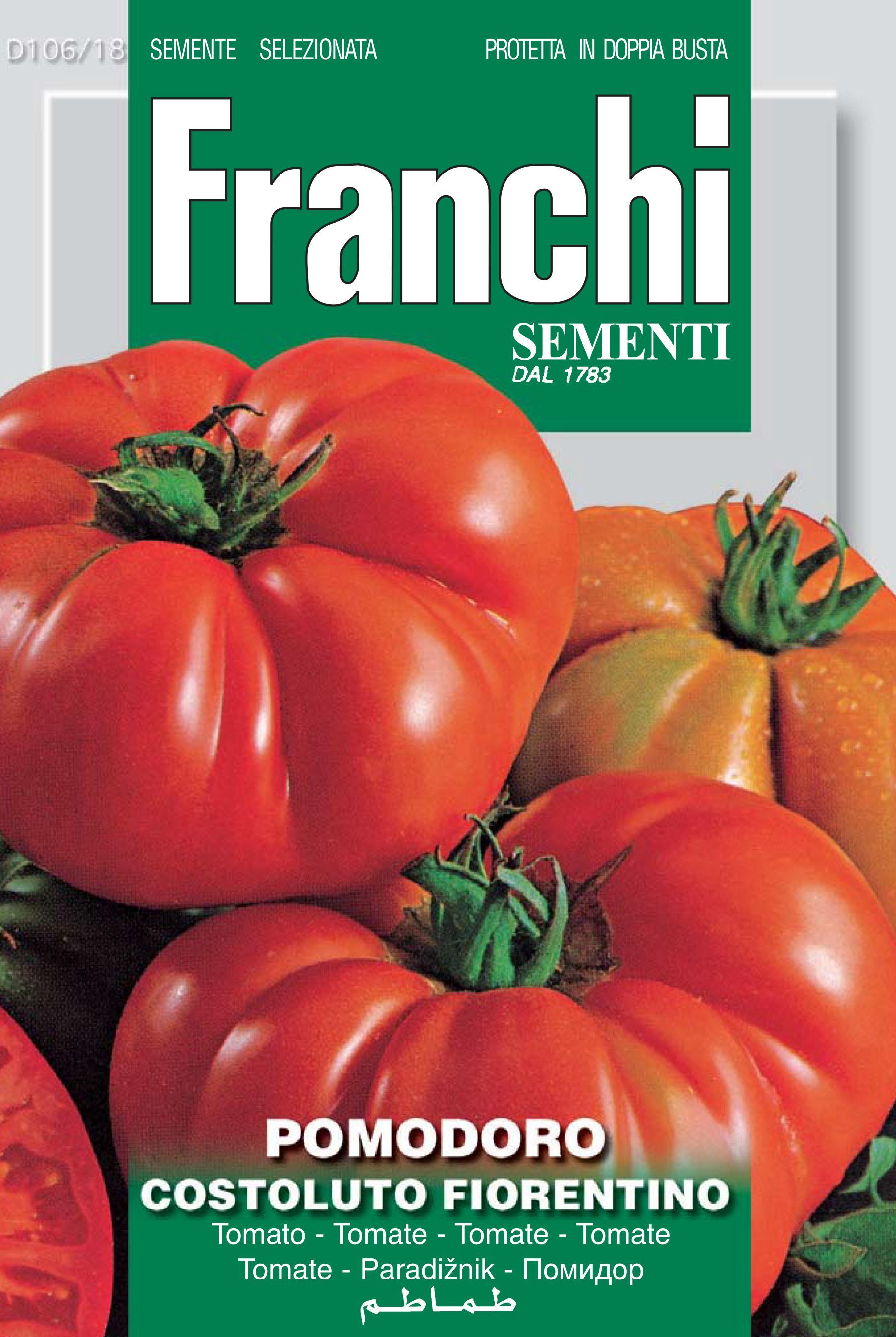 Tomto Costoluto Fiorentino (A) Solanum Lycopersicum L.