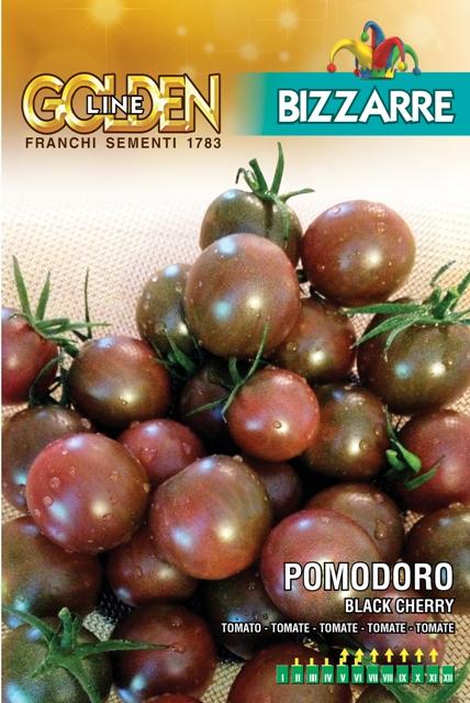 Tomato Black Cherry (A) Solanum Lycopersicum L. Indeterminate