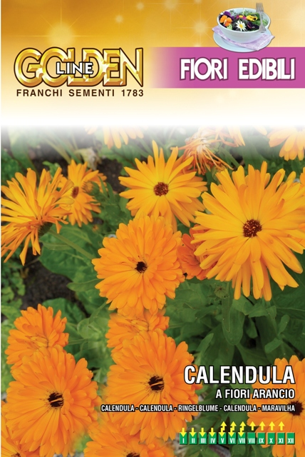 Calendula Edible Flowers For The Kitchen