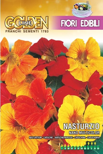 Franchi Nasturtium Dwarf