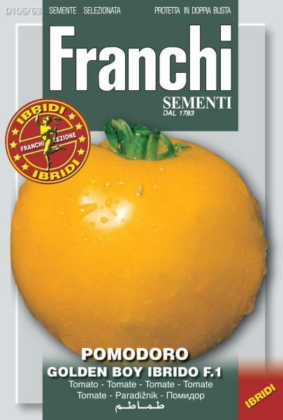 Tomato Golden Boy F1 (A) Solanum Lycopersicum L.