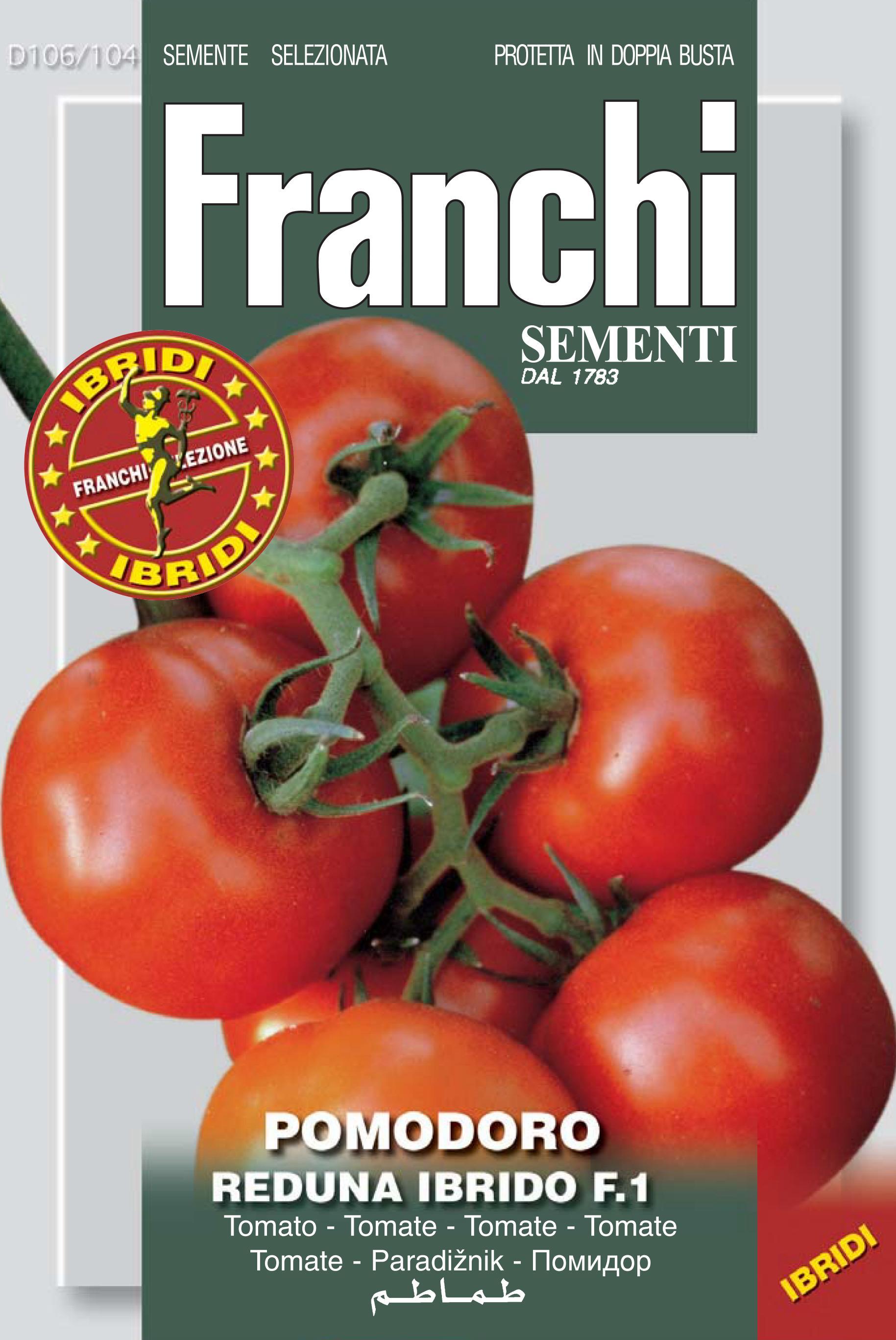 Tomato Reduna F1 (A) Solanum Lycopersicum L.
