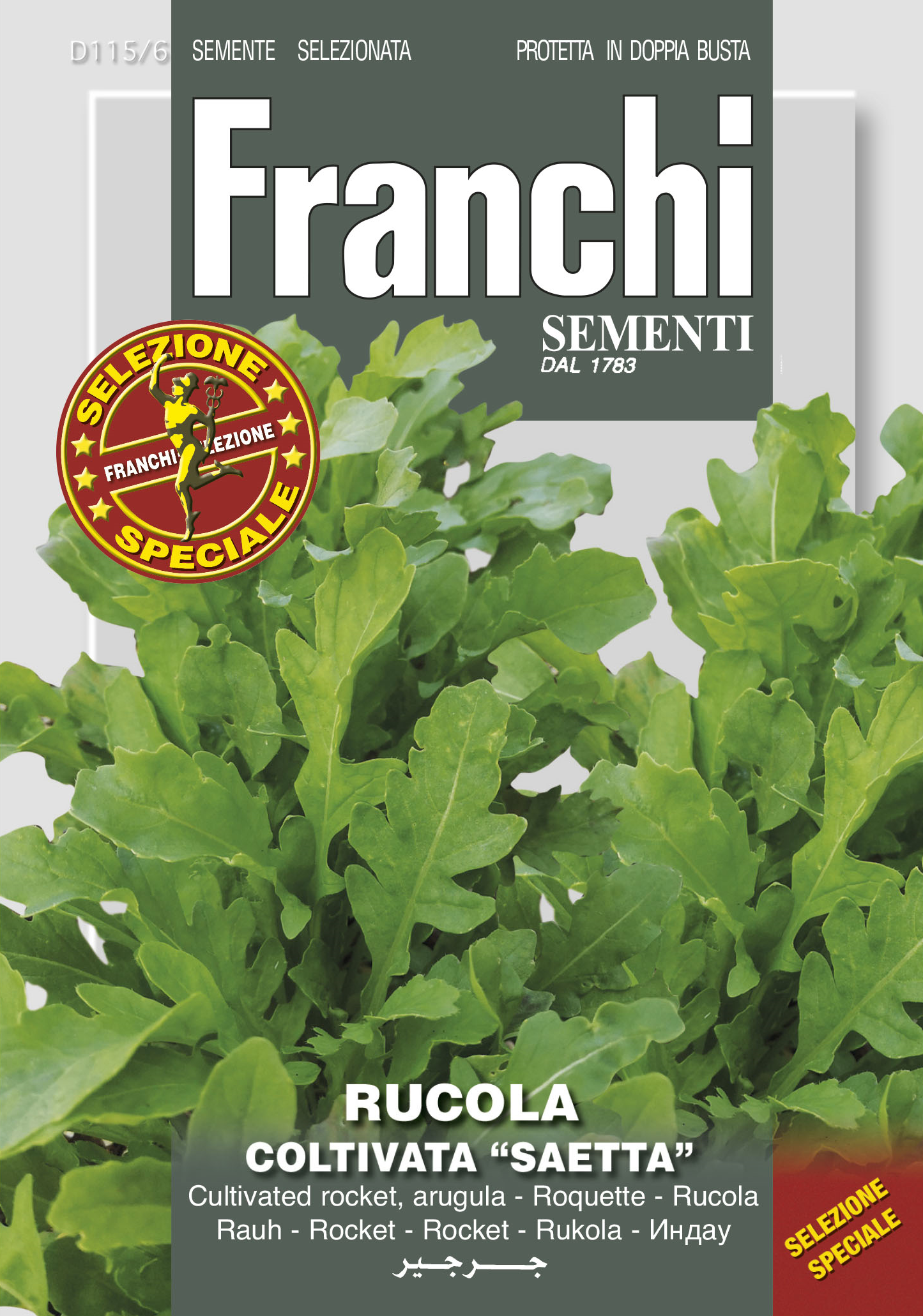 Cultivated Rocket Saetta