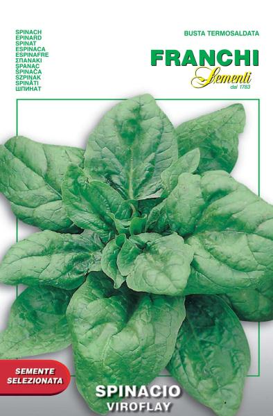 Viroflay spinach from Paris dating to 1635 at least. You supermarket doesn't even sell spinach anymore, only baby spinach which can be mechanically harvest and frozen! Yet you can grow something superior at home. We may not be able to get this variety for long.