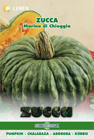 The Priest's Hat pumpkin is from the 1500's and is no longer produced for market and exists mainly just in peoples back gardens now. It comes from Emilia Romagna and is a good storer, wonderful for soups, roasting and for making ravioli.