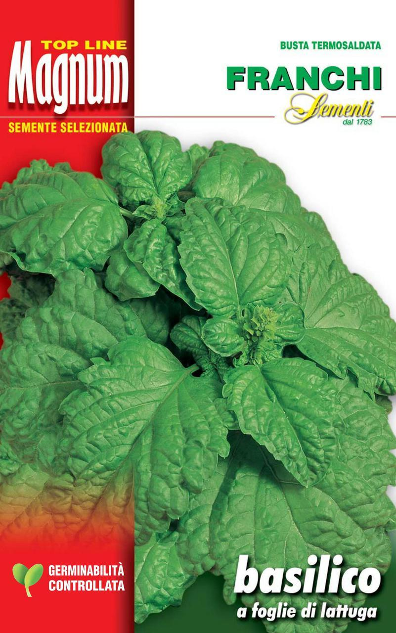 Lettuce leaf basil Restaurant Growers Pack