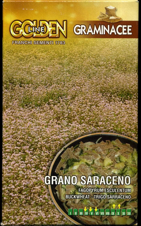 Buckwheat -  grano saraceno seeds