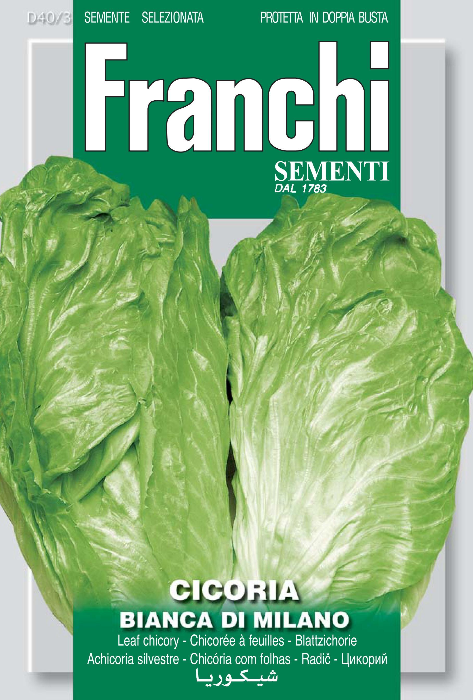 Chicory Bianca Di Milano Save 70p