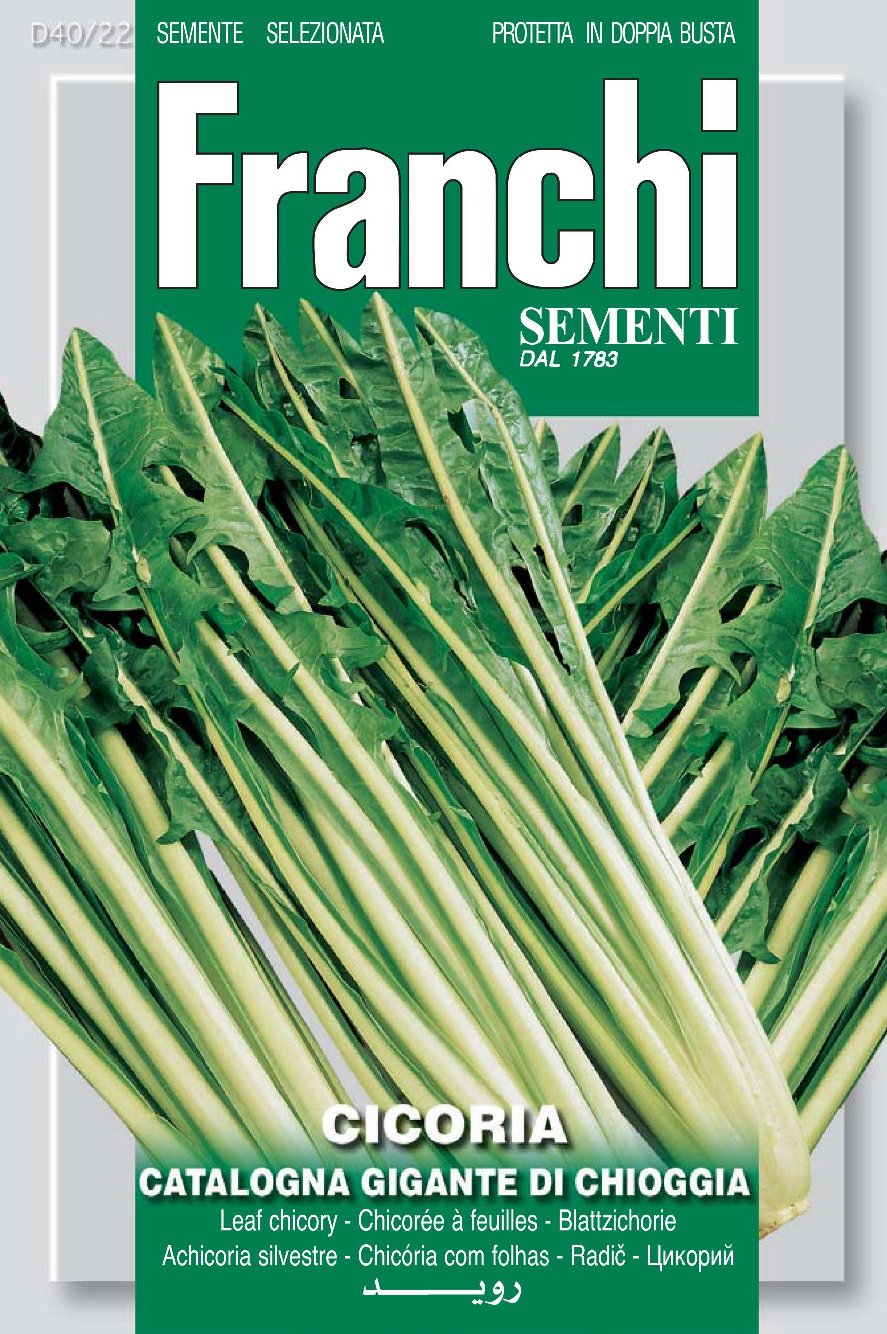 Chicory Catalogna Gigante Chioggia Save 46p