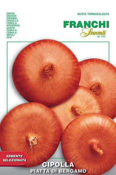 Onion Piatta Di Bergamo (A) Allium cepa L.