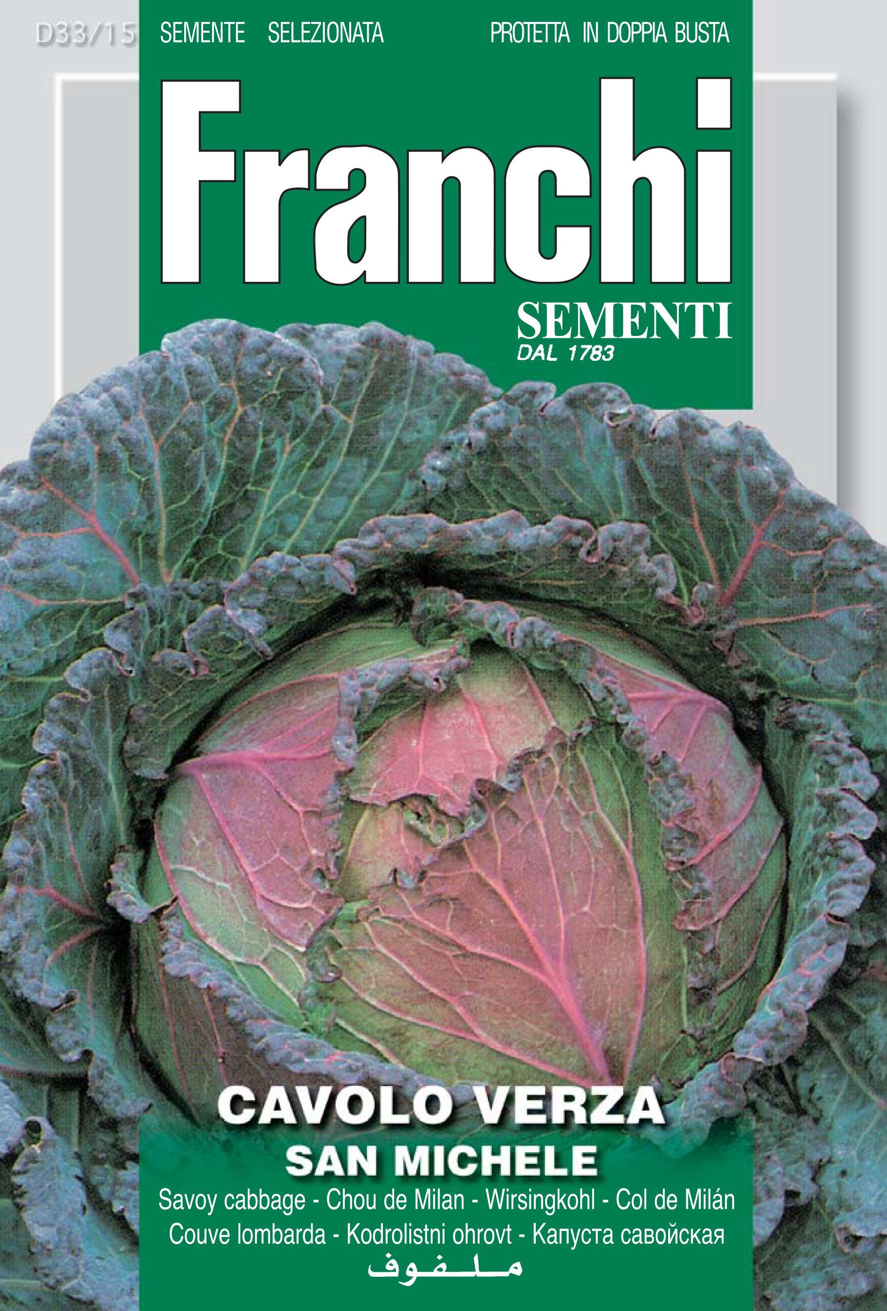 Savoy Cabbage S.Michele