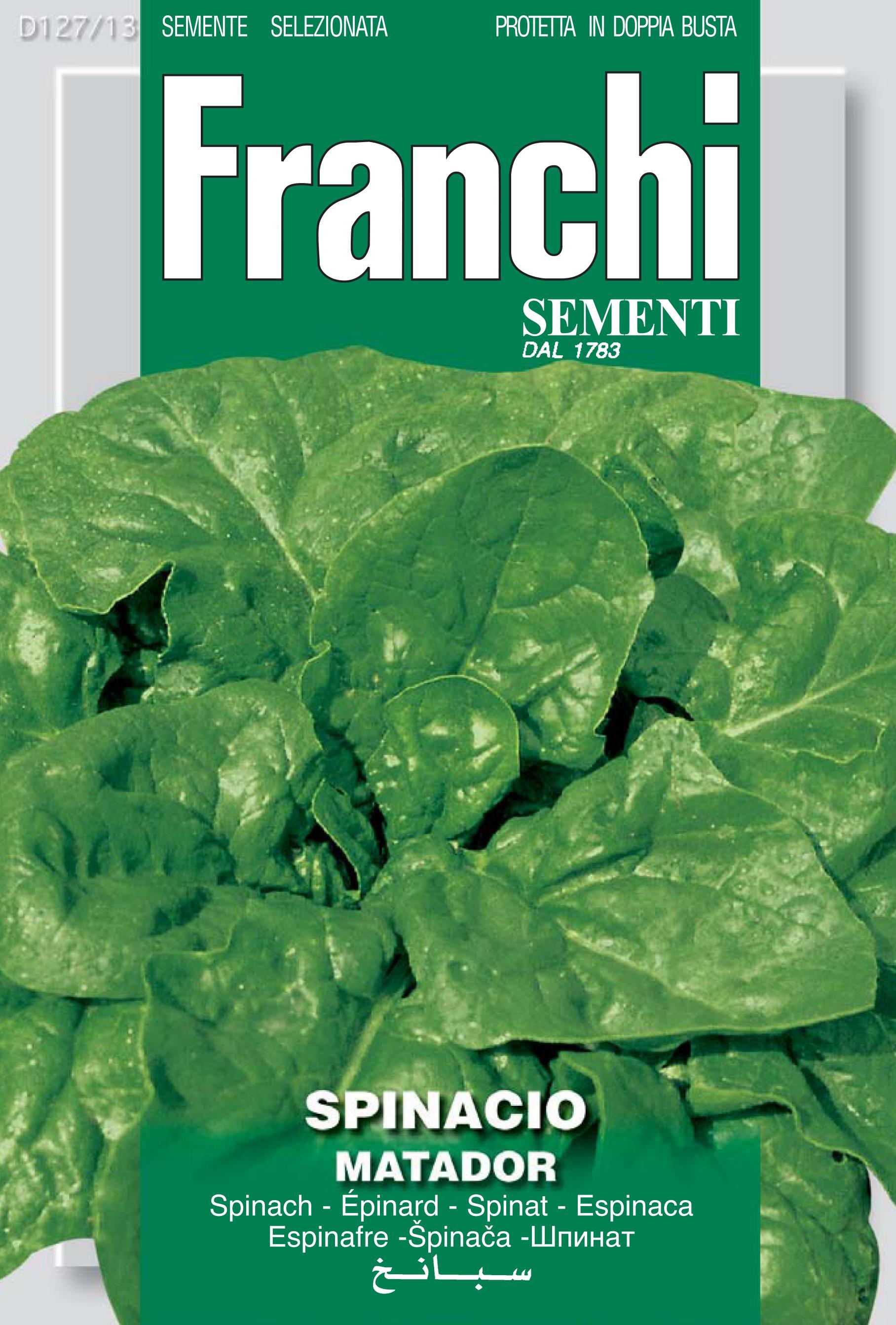 Spinach Matador Heirloom Variety