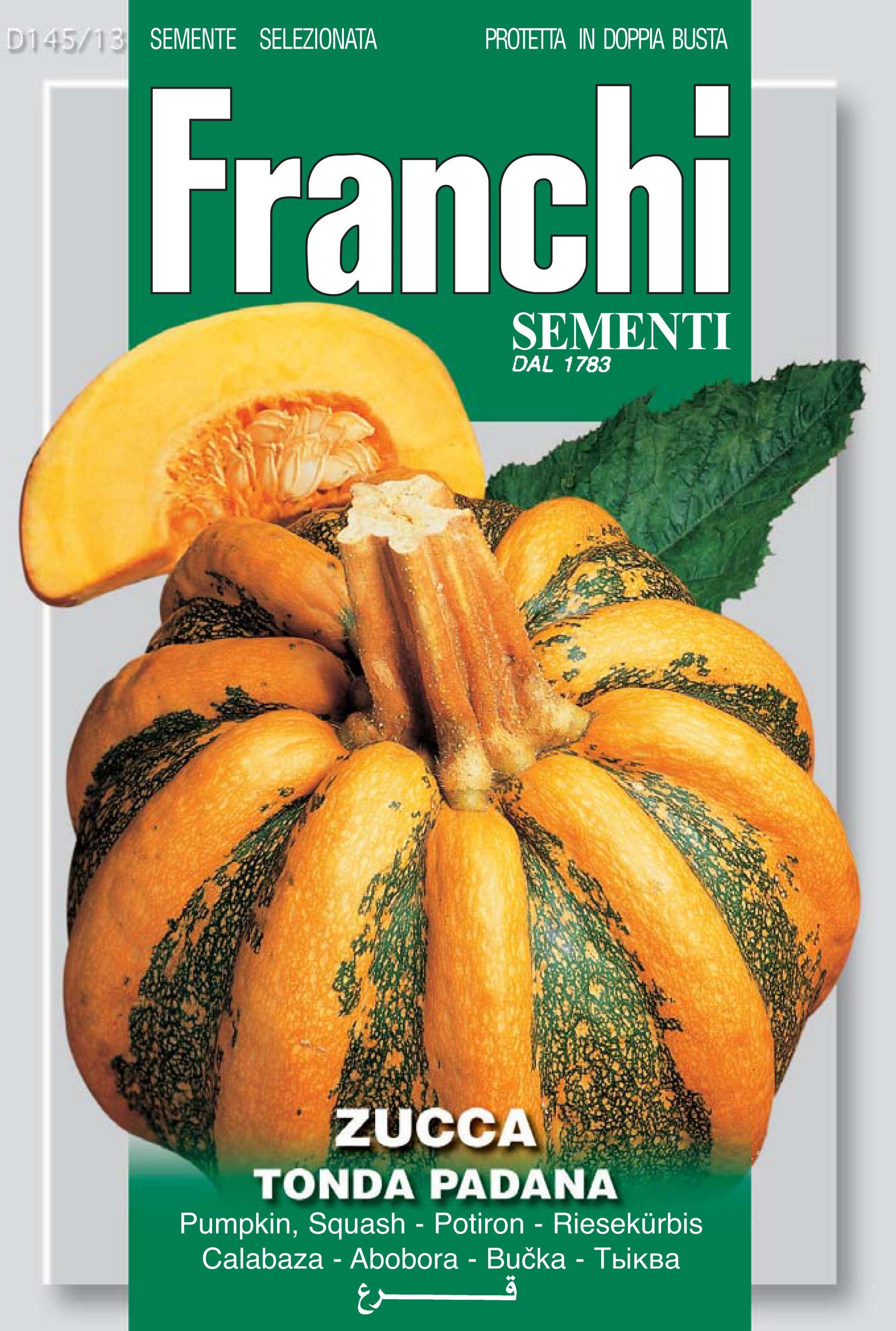 Pumpkin Padana