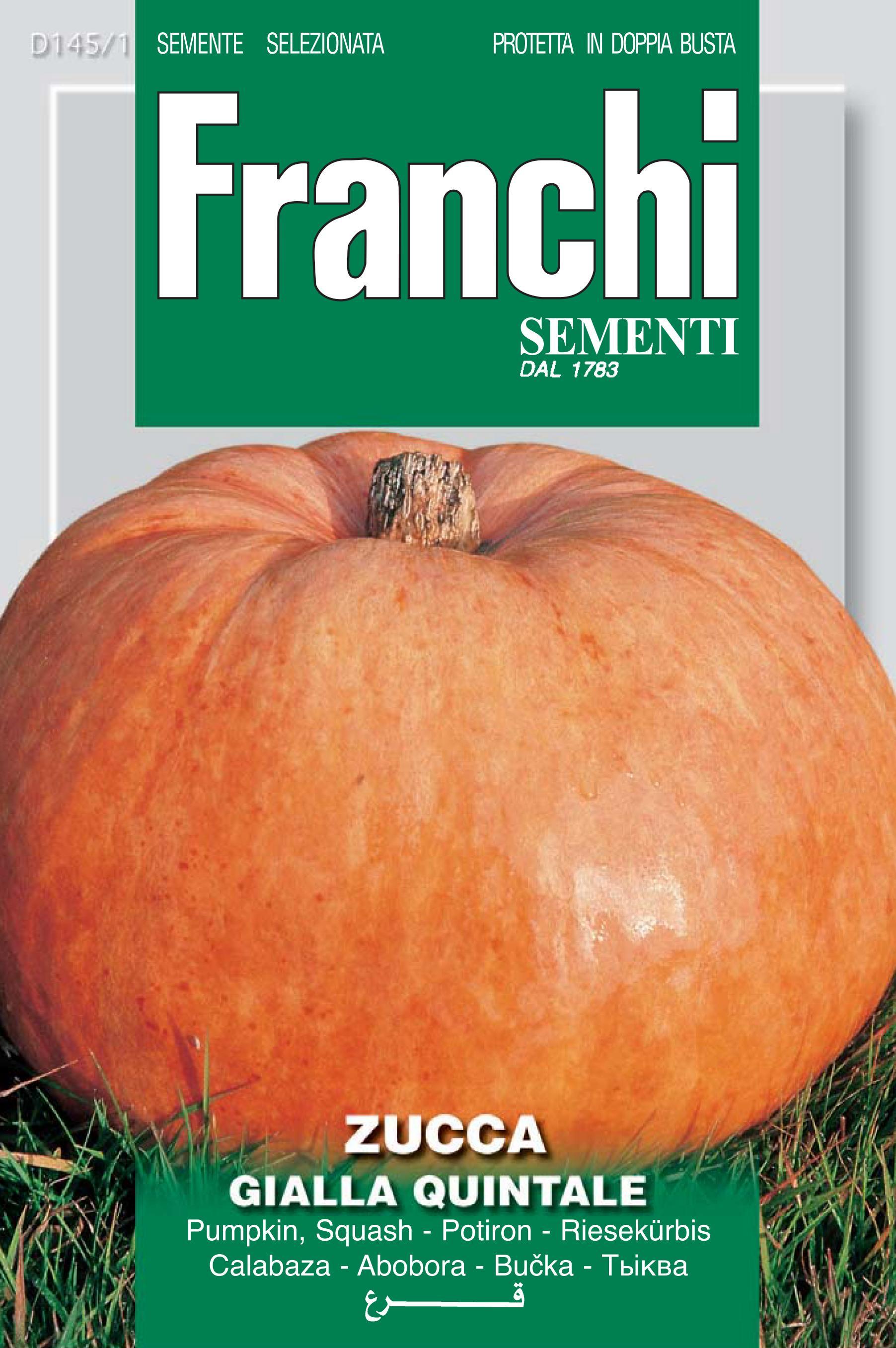 Pumpkin Quintale