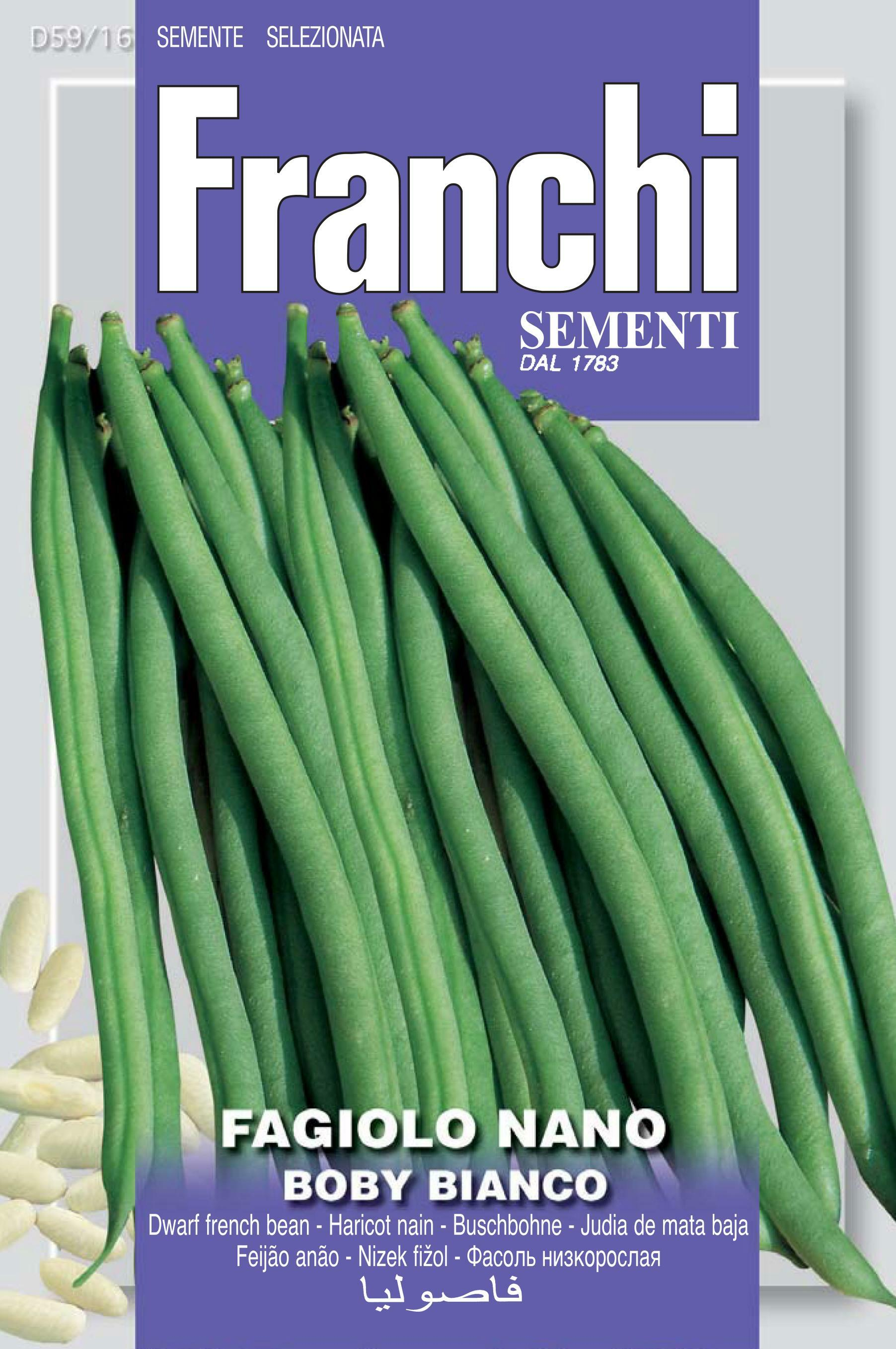 Dwarf French Bean Boby Bianco - Restaurant quality bean.