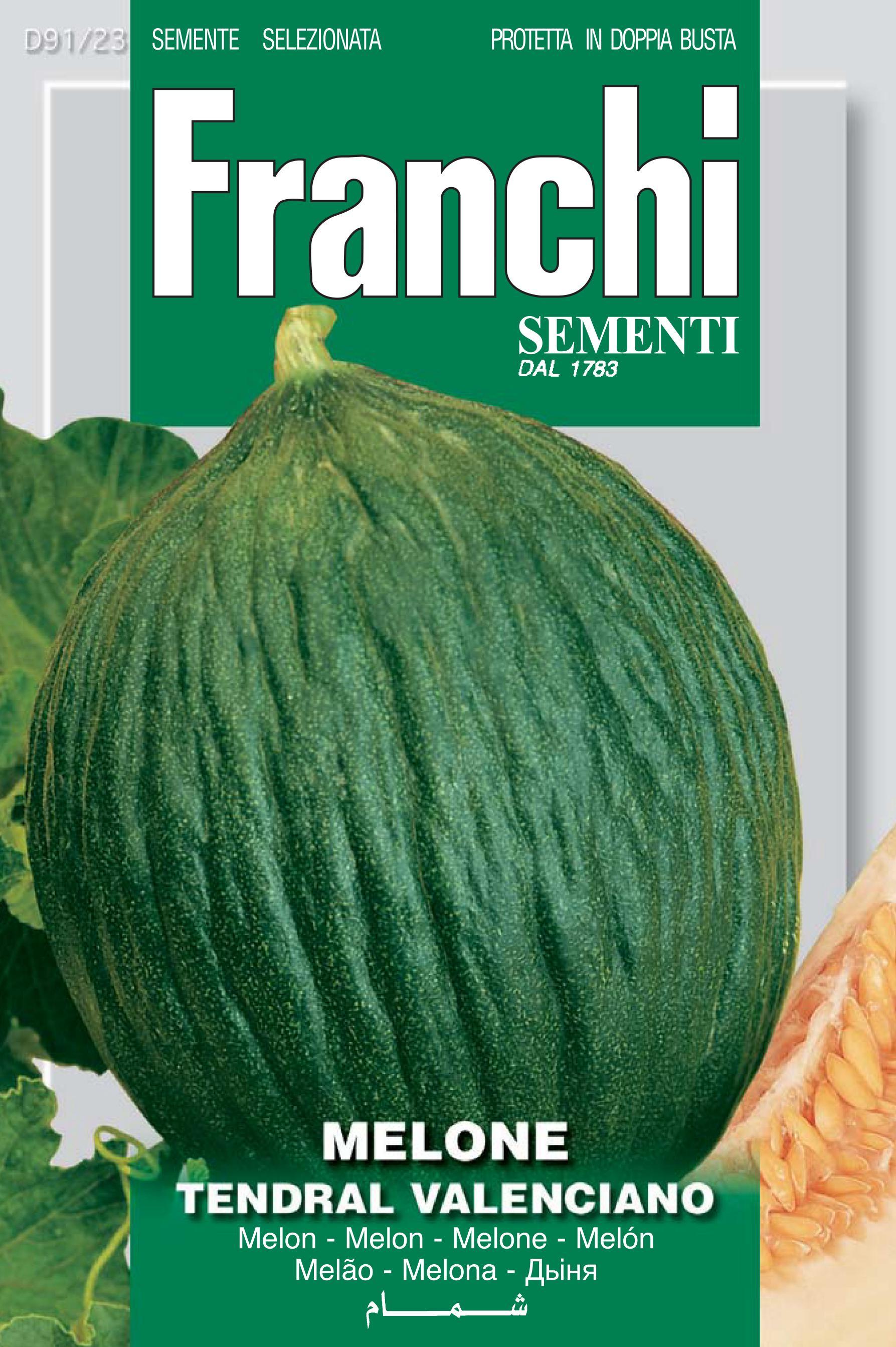 Melon tendral valeciano
