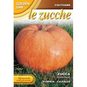 Pumpkin Gialla Quintale GL