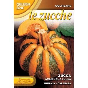 Pumpkin Americana Tonda GL