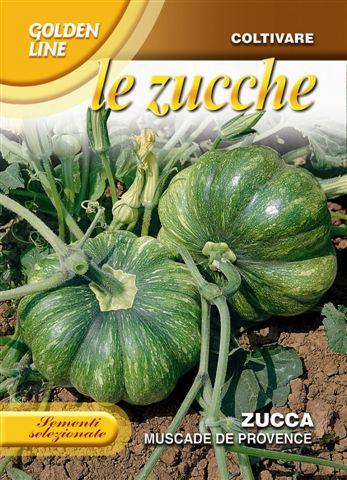 Pumpkin Muscade De Provence