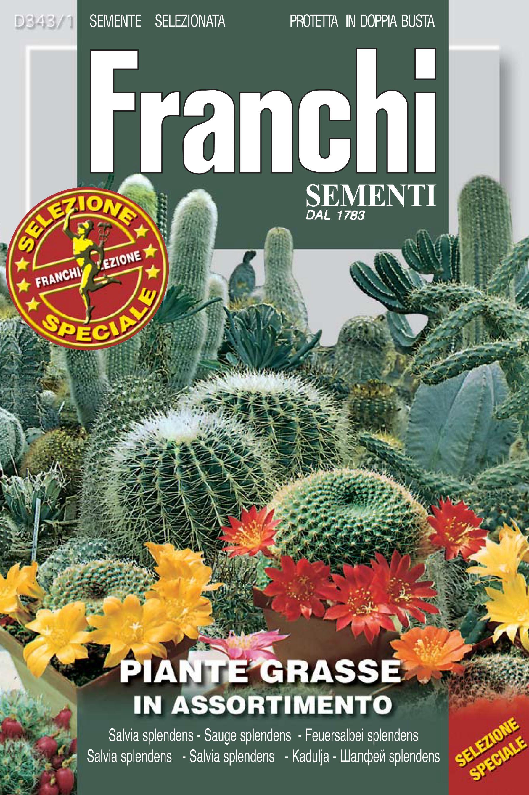 Cacti Mixed Pack