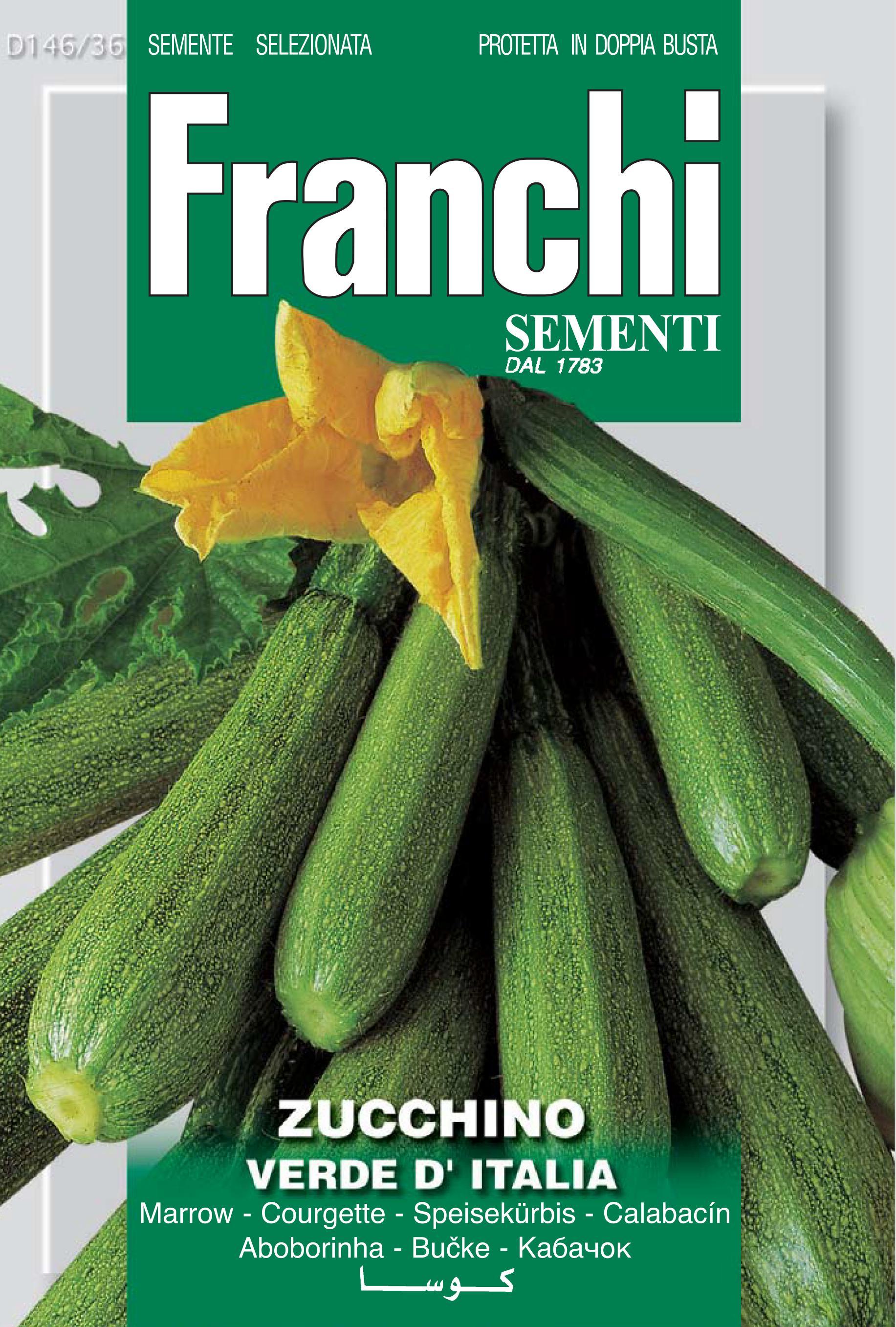 Courgette Verde D'Italia
