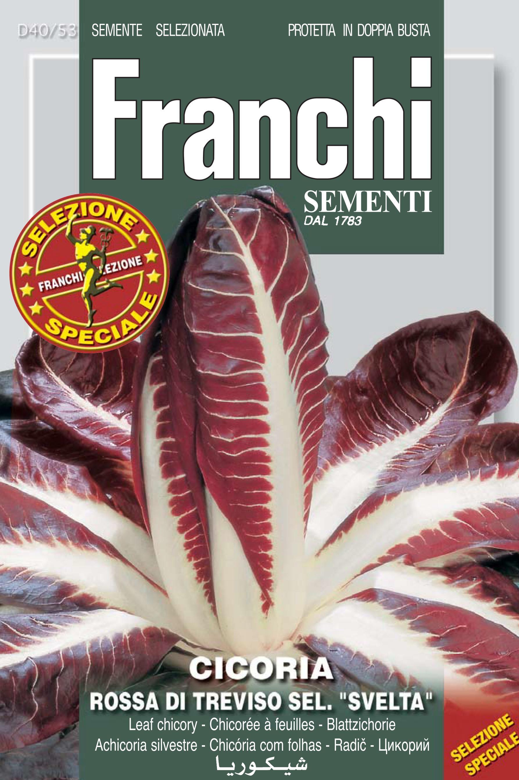 Radicchio Of Treviso 'Svelta' Precoce Restaurateurs Pack 12g