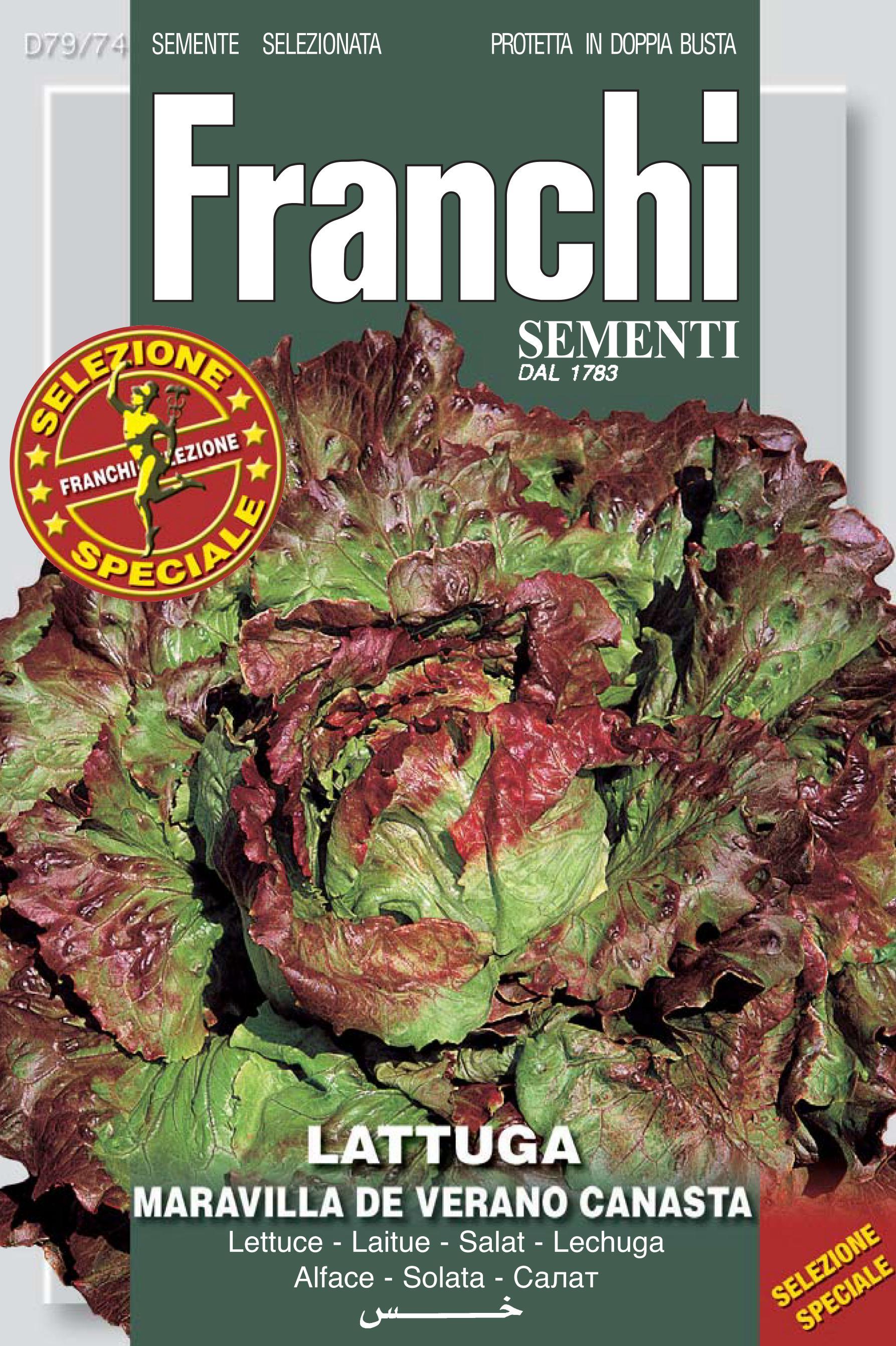 Lettuce Maravilla De Verano Canasta Special Selection