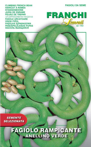 French Bean Climbing Anellino Verde UK only